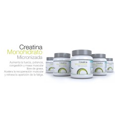 CREATINA MICRONIZADA 500g